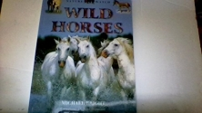 Wild Horses (Nature Watch)