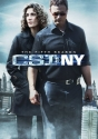CSI: New York - Season 5
