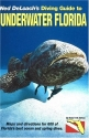 Diving Guide to Underwater Florida, 11th Edition