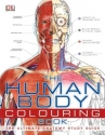The Human Body Colouring Book