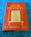 Notes on the Minor Prophets