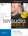 NIV Dramatized Audio Bible