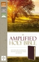 Amplified Holy Bible, Bonded Leather, Burgundy: Captures the Full Meaning Behind the Original Greek and Hebrew