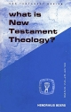 What is New Testament Theology?: The Rise of Criticism and the Problem of a Theology of the New Testament (Guides to Biblical Scholarship : New Testament Series)