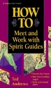 How to Meet & Work with Spirit Guides (Llewellyn's Practical Guide to Personal Power)