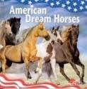 American Dream Horses