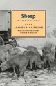 Sheep: Life on the South Dakota Range (Borealis Books)