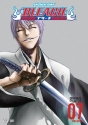 Bleach: Volume 7 - The Entry
