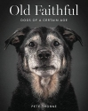 Old Faithful: Dogs of a Certain Age