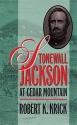 Stonewall Jackson at Cedar Mountain (Civil War America)