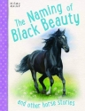 Horse Stories - The Naming of Black Beauty