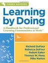 Learning by Doing: A Handbook for Professional Learning Communities at Work (An Actionable Guide to Implementing the PLC Process and Effective Teaching Methods)