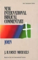 New International Biblical Commentary: John