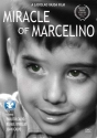 Miracle of Marcelino