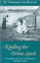 Kindling the Divine Spark: Teachings on How to Preserve Spiritual Zeal (Modern Matericon Series)