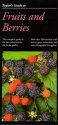 Taylor's Guide to Fruits and Berries (Taylor's Weekend Gardening Guides)