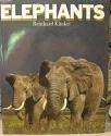 Elephants (English and German Edition)