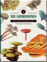 Identifying Mushrooms: The New Compact Study Guide and Identifier