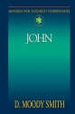 John (Abingdon New Testament Commentaries)