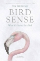 Bird Sense: What It's Like to Be a Bird