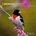 Songbirds: A Surround Sound Experience [SACD]