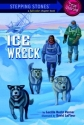 Ice Wreck (A Stepping Stone Book)