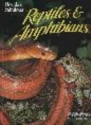 Florida's Fabulous Reptiles and Amphibians: Snakes, Lizards, Alligators, Frogs, and Turtles